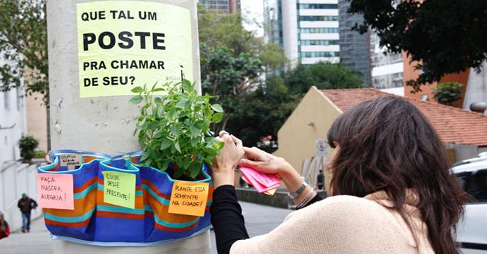 Poste Parade - Coletivo põe hortelã e manjericão em postes da av. Paulista e de Pinheiros