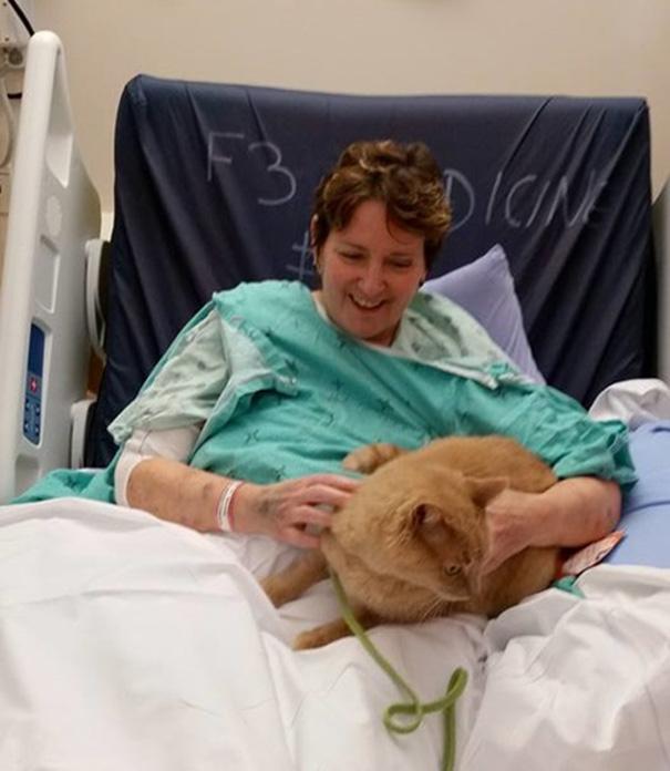 hospital-pets-allowed-animal-therapy-zacharys-paws-for-healing-juravinski-1
