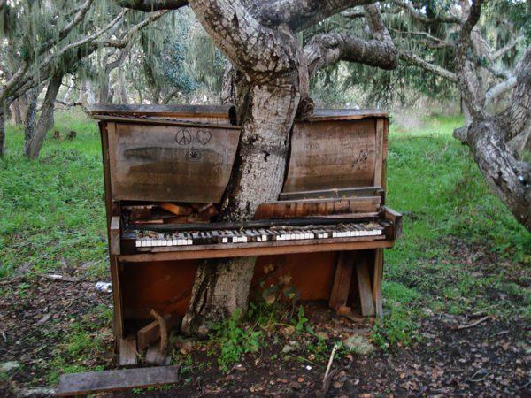 natureza-locais-abandonados-piano-california