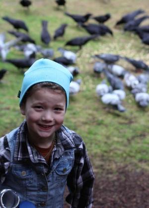 Garotinha alimenta corvos e recebe presentes dos pássaros