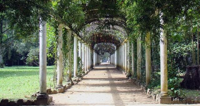 jardimbotanicoum-jardim