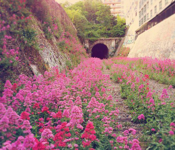 linha-de-ferro-abandonada-paris